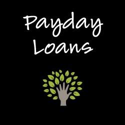 Rise cash loans image 7